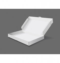packaging box vector image vector image