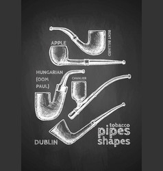 set of tobacco pipes on chalkboard vector image