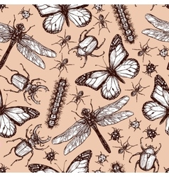 Vintage Drawn Insect Seamless Pattern vector