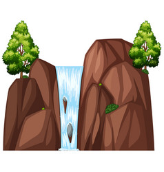 Waterfall and two big trees vector