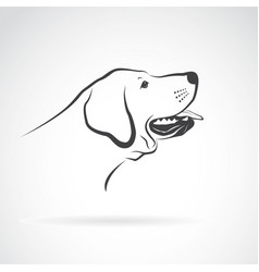 labrador dog head on a white background pet vector image vector image