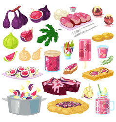 fig figured fruit and fresh fruity juice or vector image