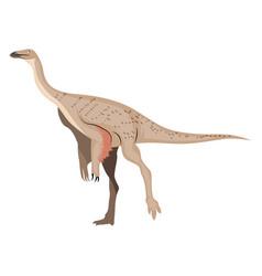 Ornithomimus on white background vector