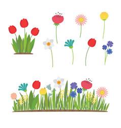 spring flowers growing in garden tulips vector image