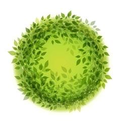 Beautiful green wreath vector image vector image
