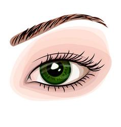 woman green beautiful eye vector image vector image