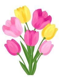 Bouquet of flowers tulips on white background vector image