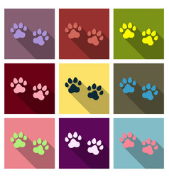 Animal footprint isolated on background dog paw vector