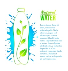 Bottle of water with a branch vector image