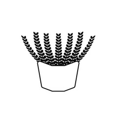 potted succulent plants flat fill vector image
