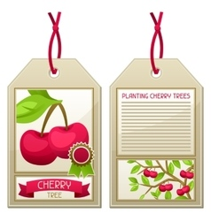 Sale tag of seedlings cherry trees Instructions vector image