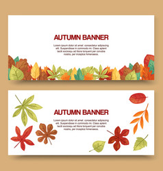 autumn leaves set banners vector image