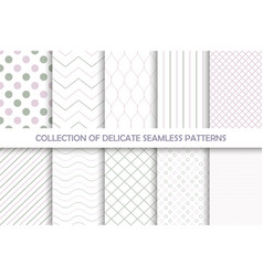 Collection seamless delicate patterns vector