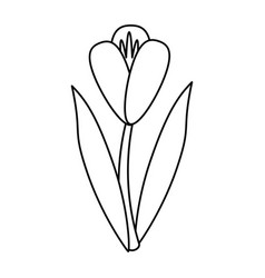 Flower flora fragant garden thin line vector