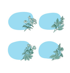 hand drawn medical herbs stickers vector image