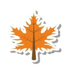 Leaf autumn isolated icon vector