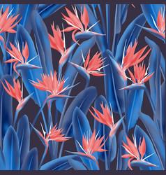 tropical crane flower seamless pattern vector image
