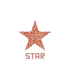 Red star sign vector image