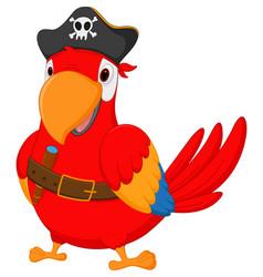Pirate parrot cartoon vector