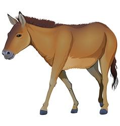 A brown horse vector