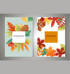 Autumn leaves card templates set banners vector