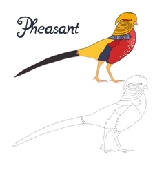 Educational game connect dots draw pheasant bird vector