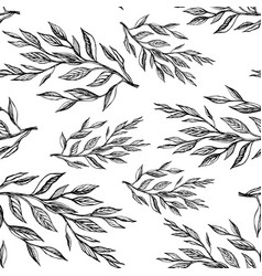 seamless pattern botanical vector image