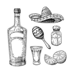 tequila bottle salt shaker and shot glass vector image