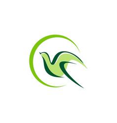 bird fly abstract beauty company logo vector image vector image