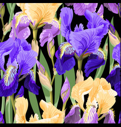 Floral pattern with iris flowers vector