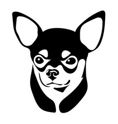 portrait of the chihuahua vector image vector image