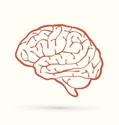 Brain side view outline graphic vector