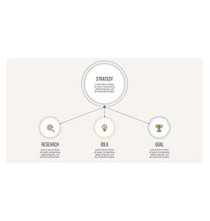 business infographic organization chart with 3 vector image
