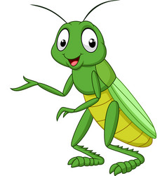 Cartoon grasshopper isolated on white background vector
