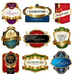 collection golden ornate labels vector image