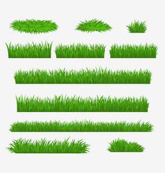 green grass media and farm field grass blades vector image