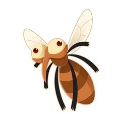 Mosquito vector