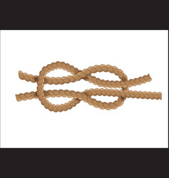 nautical rope knot vector image