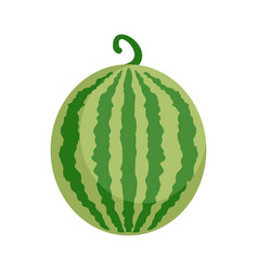 Whole watermelon icon flat style vector