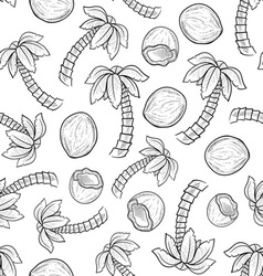 doodle palm coconut pattern seamless vector image