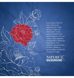 Blue postcard with peonies vector image