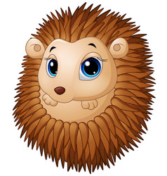 Cute baby hedgehog vector