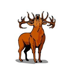 Deer Roaring vector