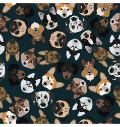 flat dark seamless pattern pedigree dogs vector image