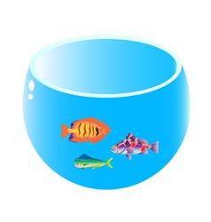 home aquarium with three fish vector image