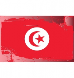 tunisia national flag vector image