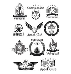 Volleyball sport club awards icons set vector
