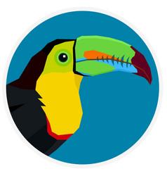Wild birds keel-billed toucan vector