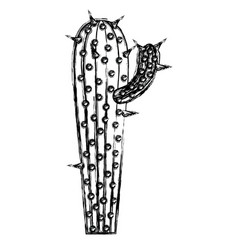 monochrome blurred silhouette of cactus with small vector image