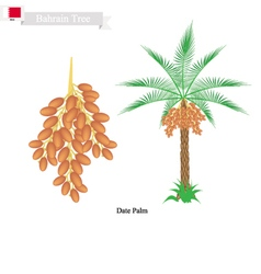 Date Palm A National Tree of Bahrain vector image